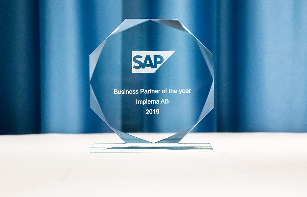 SAP Business Partner of the year