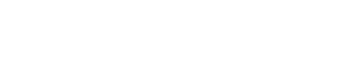 Tricentis Logo White